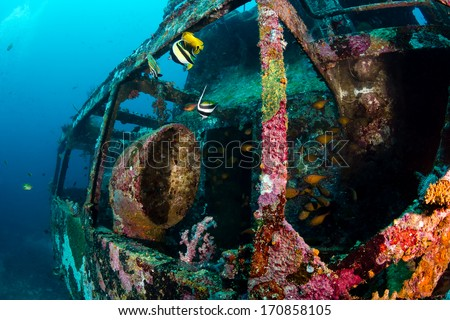 Tropical fish swim around a coral-encrusted underwater shipwreck - stock photo
