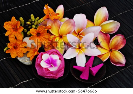 tropical flowers on dark background