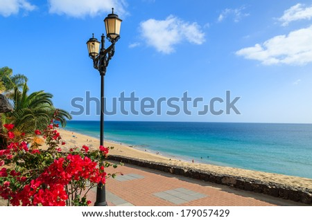 Tropical flowers on promenade along Jandia beach in Morro Jable with ocean view, Fuerteventura, Canary Islands, Spain - stock photo