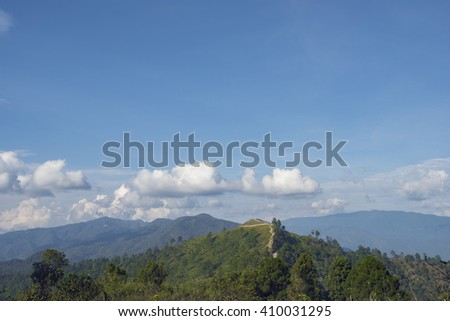 tropical forrest - stock photo