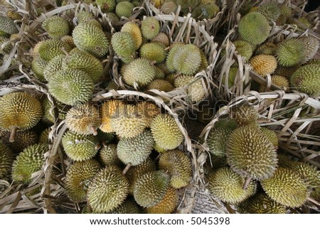 Tropical fruits, durians, in baskets. - stock photo