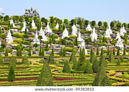 Tropical Garden in pattaya, thailand. - stock photo