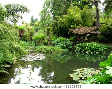 Tropical gardens at the Lost Gardens of Heligan in Cornwall, England - stock photo
