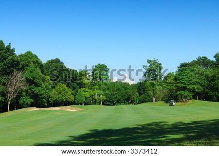 Tropical Golf Field - stock photo