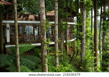 tropical green house - stock photo