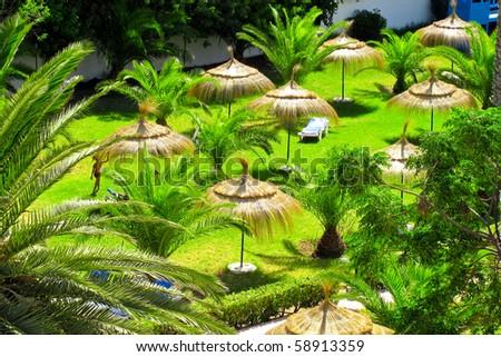 Tropical holidays - stock photo
