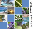 Tropical installation. Seychelles. The collection of photos. There is an empty seat for your text. Collage - stock photo