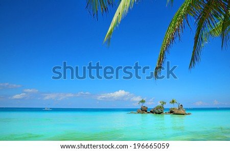 Tropical island and palm leaves - stock photo