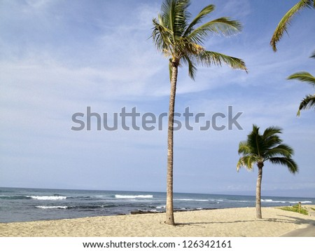 Tropical island scene - stock photo