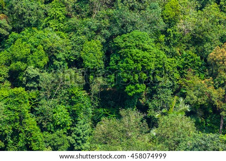Tropical jungle aerial shot 30