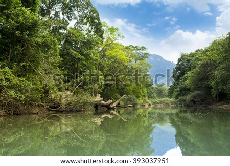 Tropical jungle landscape of Khao Sok National Park in Thailand