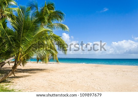 Tropical landscape from Sainte Marie Island - stock photo