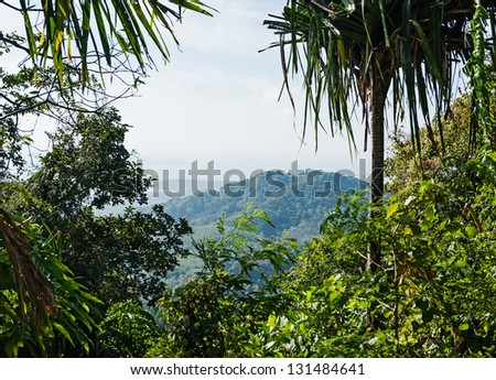Tropical landscape in Phuket Thailand - stock photo