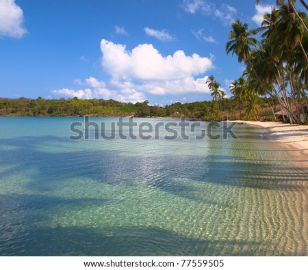 Tropical landscape with clear sea water