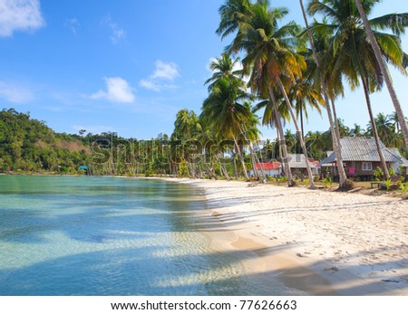Tropical landscape with exotic palm trees on the sand and clear sea water
