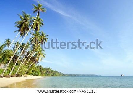 Tropical landscape with plenty of copyspace.