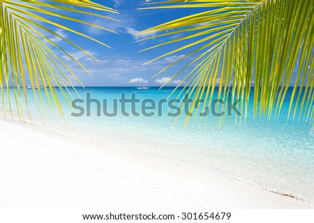 Tropical landscape with turquoise sea and white sandy beach through palm tree leafs