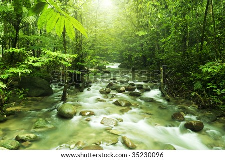 Tropical mountain stream with sunbeam in a morning. - stock photo