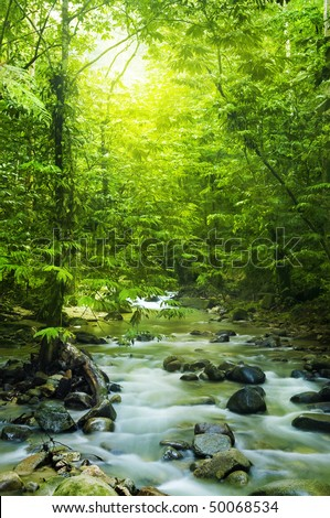 Tropical moutain stream with sunbeam in a morning. - stock photo