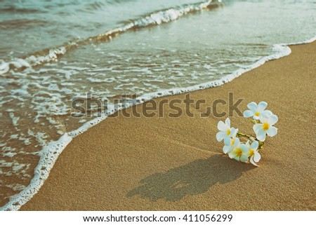 Tropical of plumeria flower blooming on the beach - stock photo