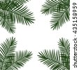 tropical palm leaves in the corners background raster copy. - stock vector