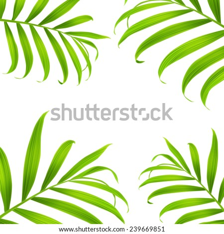 Tropical palm leaves. seamless stylish fashion pattern, in Hawaiian style. With free space for your text - stock photo