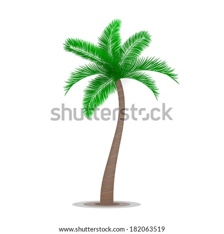 Tropical palm tree symbol isolated  illustration