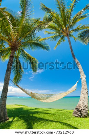 Tropical Palm Trees and Hammock - stock photo