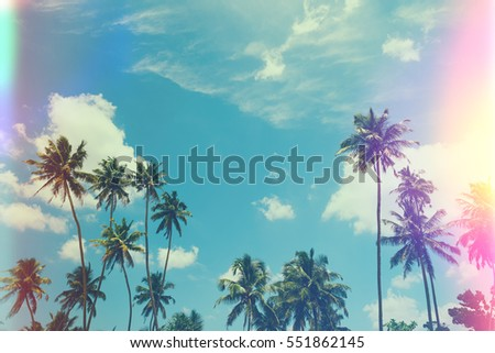 Tropical palm trees at sunny summer day, vintage film stylized with film light leaks