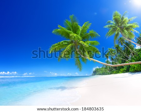 Tropical Paradise Beach - stock photo