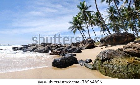 Tropical paradise in Sri Lanka, Tangalle with palms hanging over the beach and turquoise sea. Panorama - stock photo