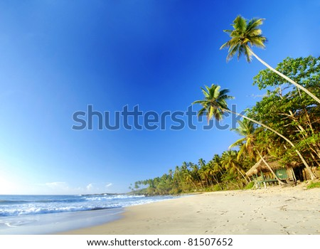 Tropical paradise in Sri Lanka, Tangalle with palms hanging over the beach, old wooden hut and turquoise sea - stock photo