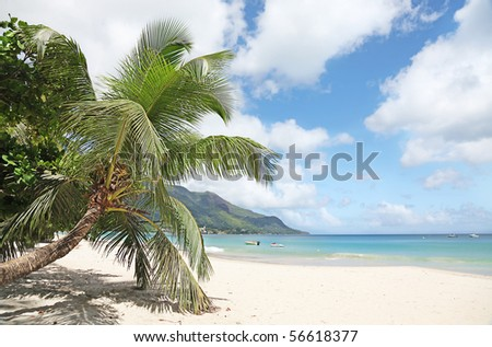 Tropical Paradise of the Seychelles