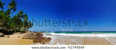 Tropical paradise on Sri Lanka with palms hanging over the beach and turquoise sea. Panorama - stock photo