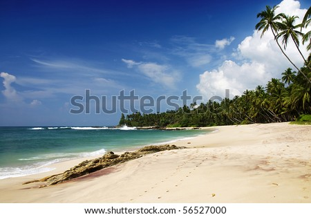 Tropical paradise on Sri Lanka with palms hanging over the white beach and turquoise sea - stock photo