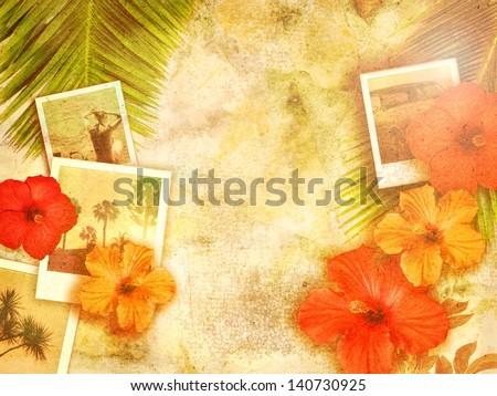 tropical photo background - stock photo