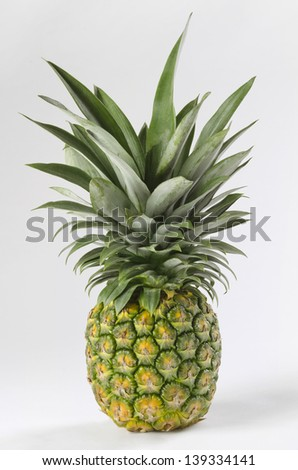 Tropical Pineapple A leafy pineapple on white background