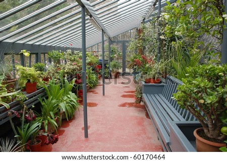 tropical plants and bench in a long conservatory - stock photo
