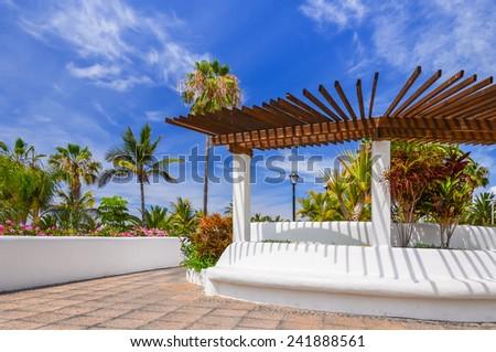 Tropical plants on coastal promenade along ocean in Puerto de la Cruz, Tenerife, Canary Islands, Spain - stock photo