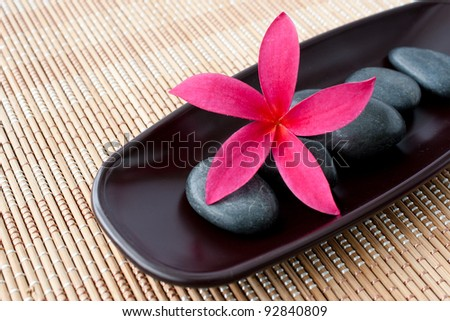Tropical Plumeria Frangipani with spa stone on bamboo mat for spa and wellness concept - stock photo