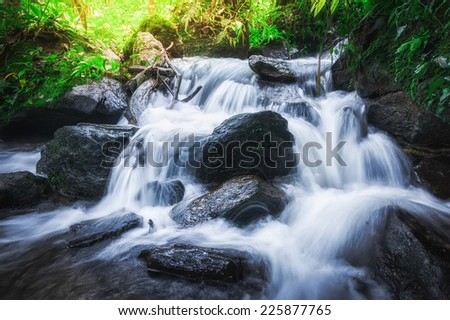 Tropical rain forest landscape with jungle plants and flowing water of small waterfall. Doi Inthanon National park, Chiang Mai province, Thailand - stock photo