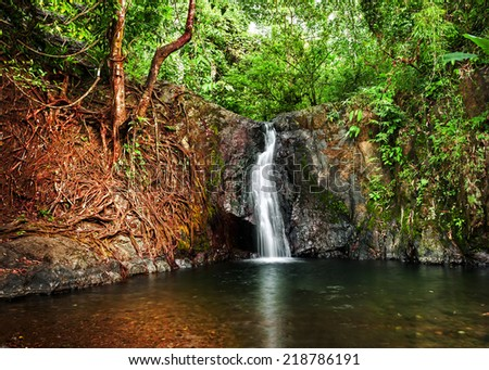 Tropical rain forest landscape with jungle plants and flowing water of small waterfall. Vang Vieng, Laos - stock photo