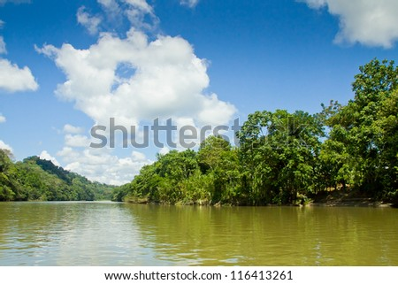 tropical rain forest river with blue skyes - stock photo