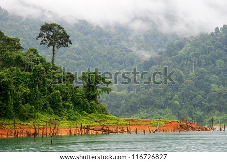 Tropical rainforest at Kenyir Lake in Terengganu, Malaysia, a man made lake built for purpose of hydroelectric power supply