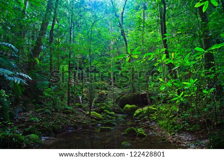 Tropical Rainforest Landscape, Thailand, Asia - stock photo