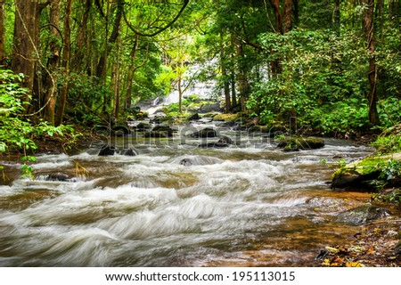 Tropical rainforest landscape with flowing river, rocks and jungle plants. Chiang Mai province, Thailand - stock photo