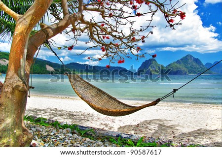 tropical relax - stock photo
