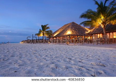 tropical restaurant by night. the palm trees are a bit blurred - it was a windy night - stock photo
