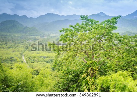 tropical rian forest view from top of the tree - stock photo