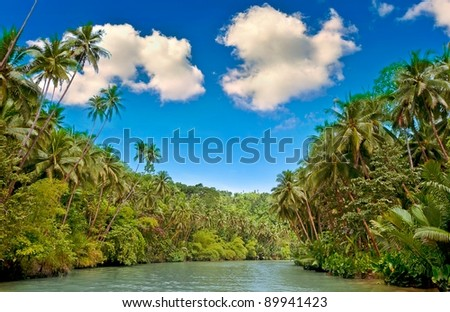 Tropical river with palm trees on both shores - stock photo